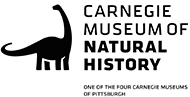 Field Trip Partner Carnegie Museum of Natural History